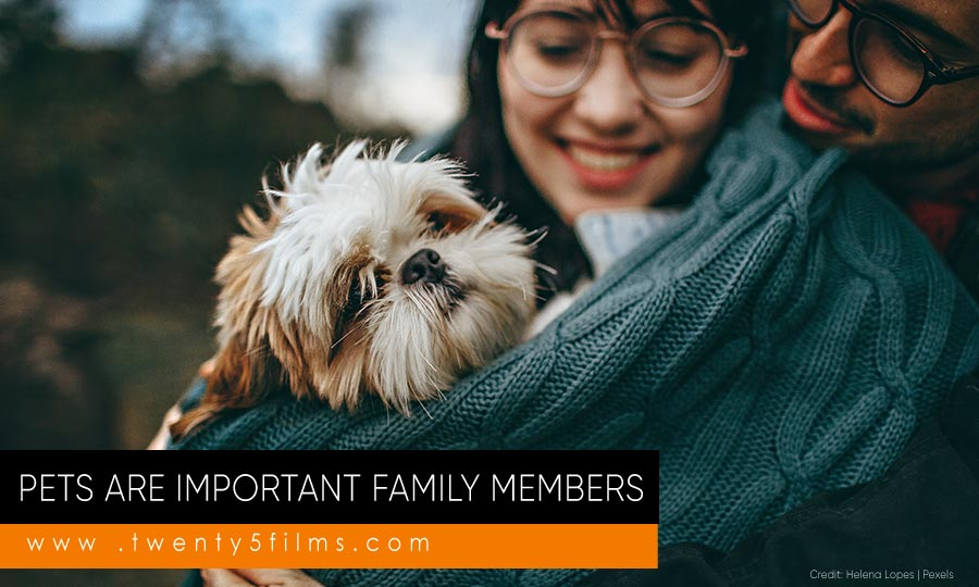 Pets are important family members
